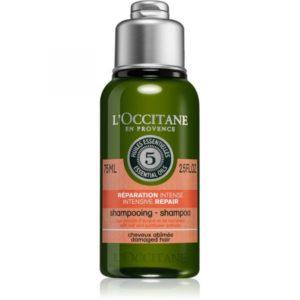 L'Occitane Essential Oils Intensive Repair Shampoo